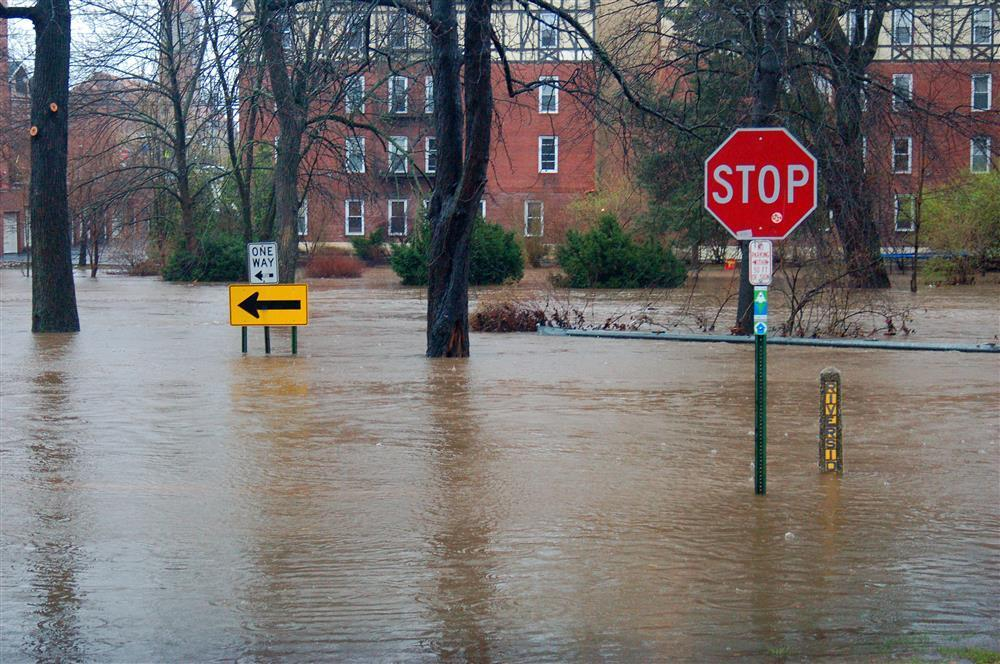 5 Things in Your Home That You Didn't Know Are Covered by Flood Insurance